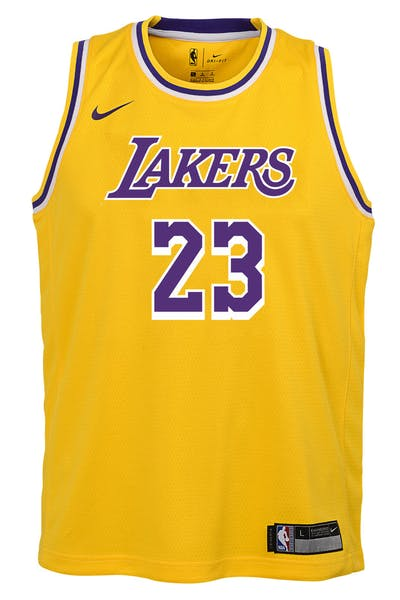 ce8ab1a358e Nike Kids Los Angeles Lakers LeBron James  23 Icon Swingman NBA Jersey  Yellow