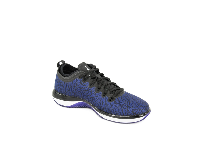 Jordan Trainer 1 Low Black/blue/white