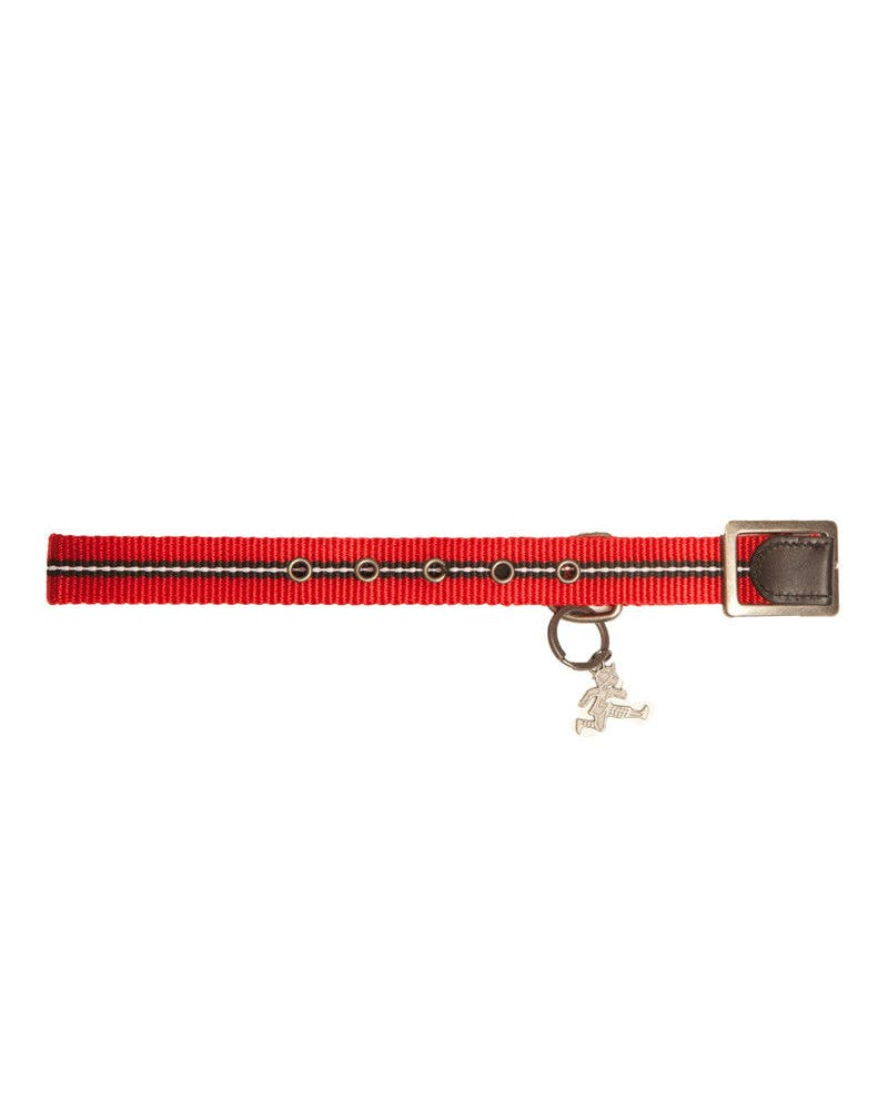 Dog Collar Red