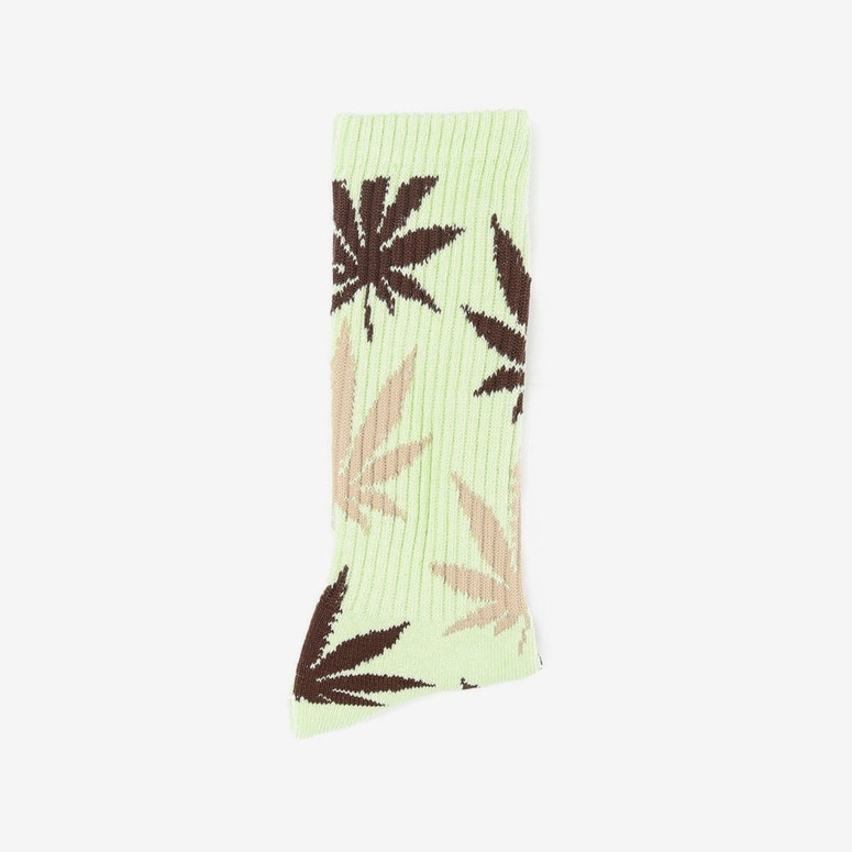 the Plantlife Socks 5 Mint/chocolate/